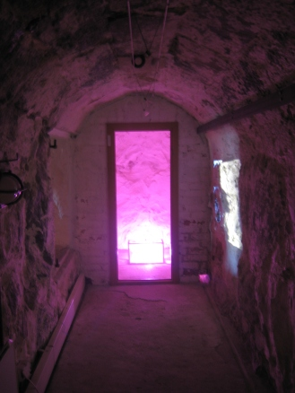The pink icy room