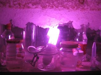 Water samples from Kilpisjärvi, Tornionjoki, Itämeri, Meri´s DNA etc.