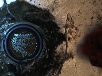 Cymatics snap shot while Robin DeWan plays didgeridoo