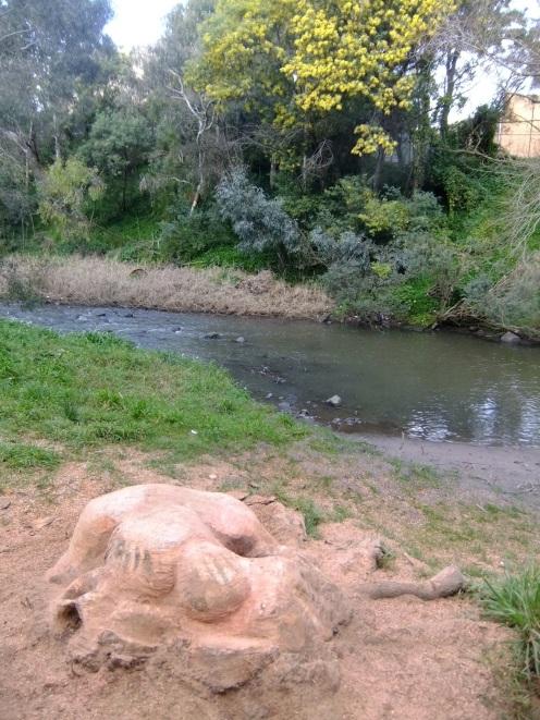 MissSpelled by the Merri Creek, East Brunswick, Melbourne Australia